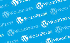 What Makes WordPress The Best Platform For eCommerce?