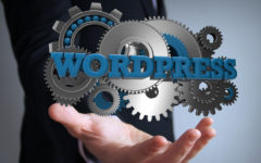 Amazing Facts About WordPress You Will Love To Know!