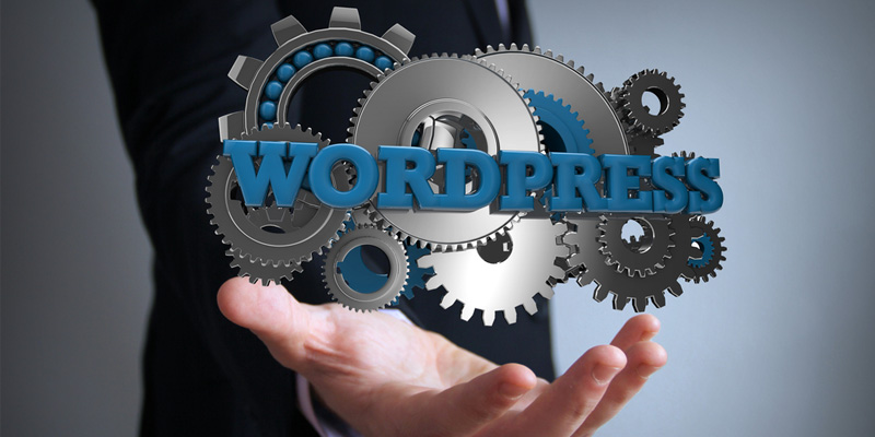 Amazing-Facts-About-WordPress-You-Will-Love-To-Know