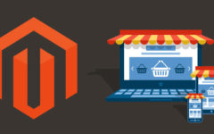 Why Choose A Magento Development Company For eCommerce Site?