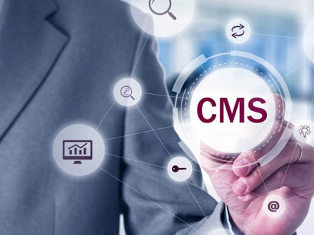 why-should-you-use-cms-for-website-development