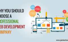 Why You Should Choose a Professional Web Development Company?
