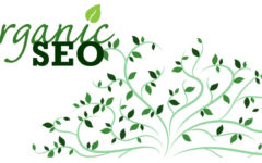 Guidelines To A Perfect SEO Strategy For An eCommerce Website
