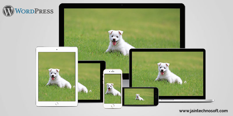 responsive-images-in-wordpress