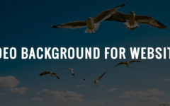How To Build YouTube Video Background For Your Website