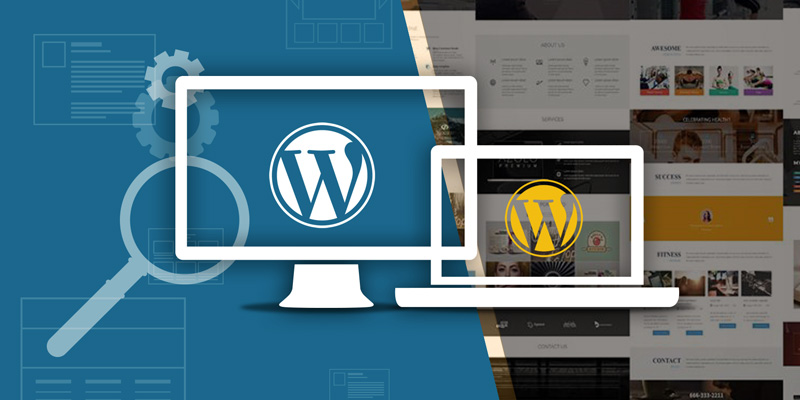 wordpress-expert-web-developers